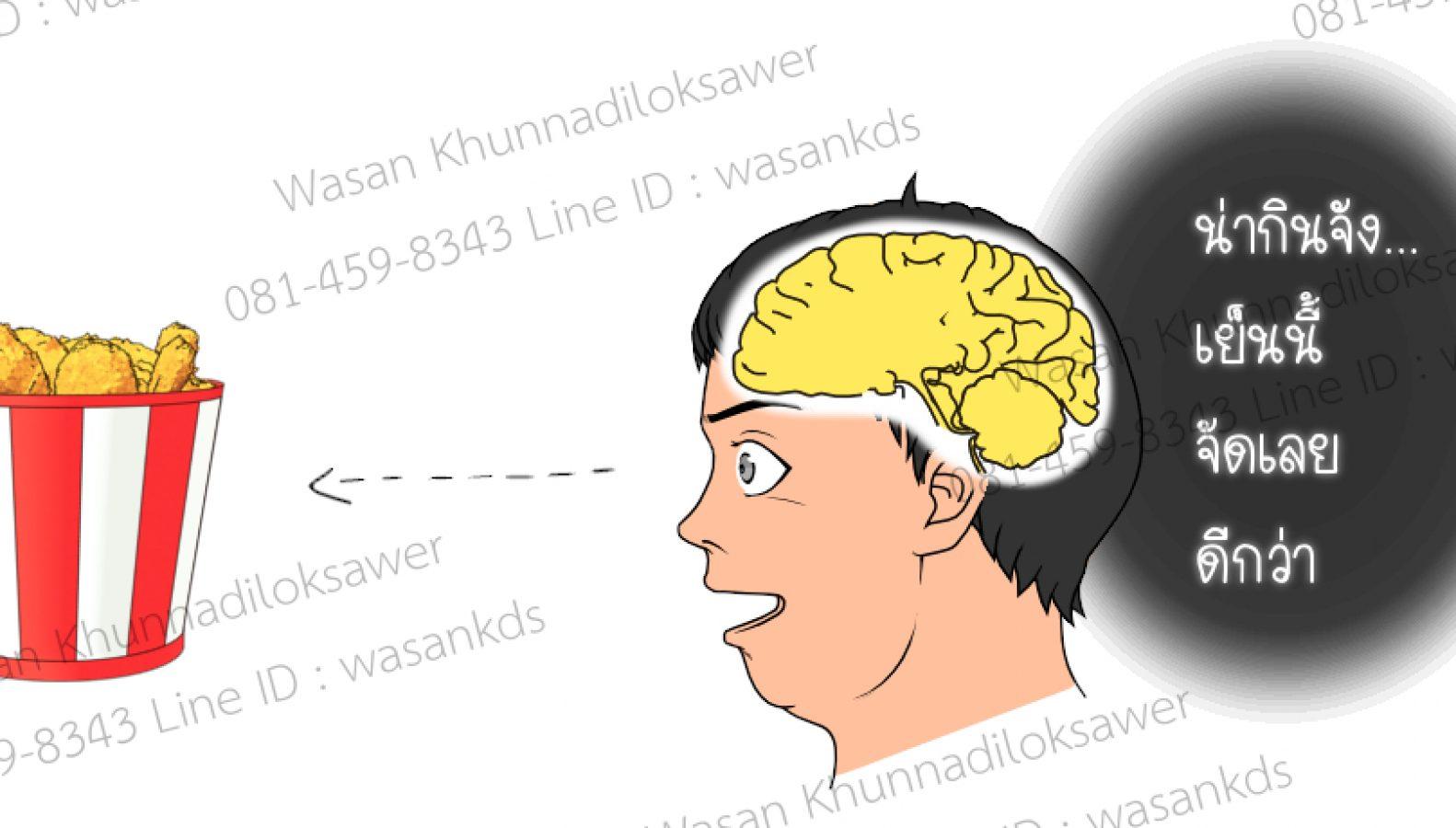 LwRoot_1.5_Brain